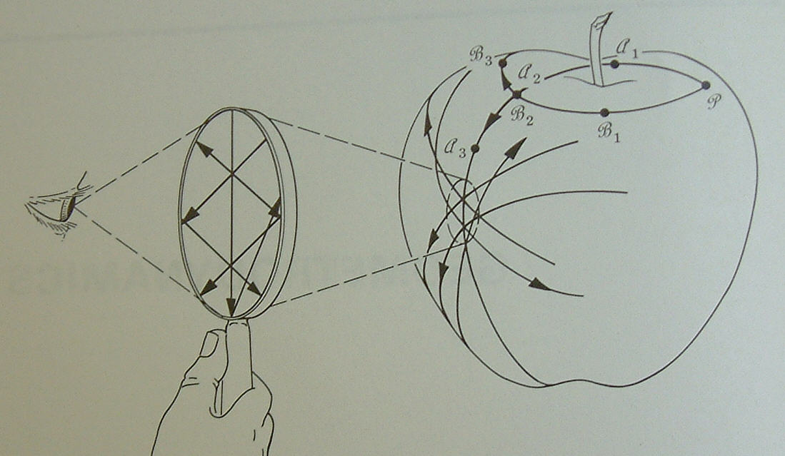 misner thorne wheeler gravitation pdf